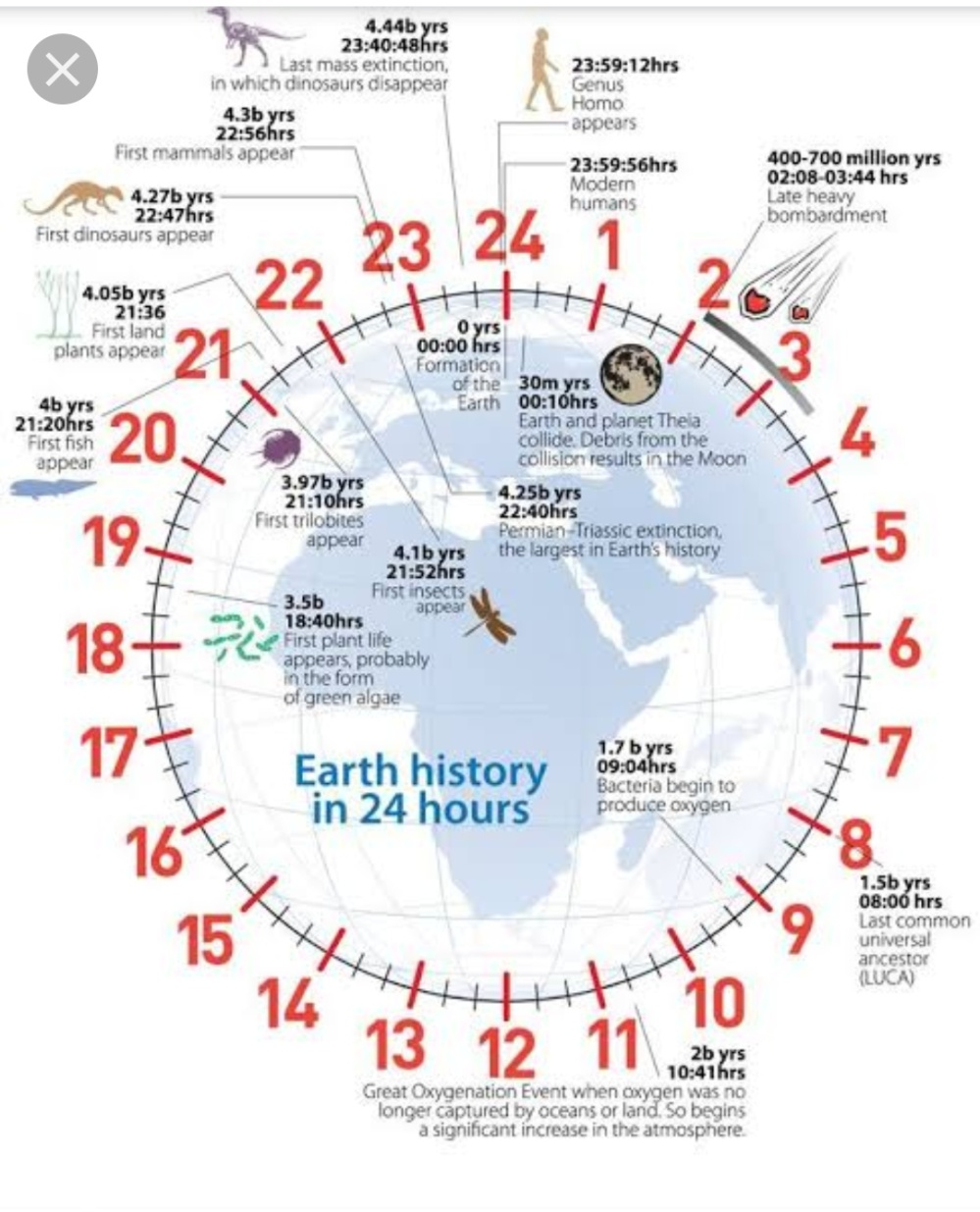 The history of our planet in 24 hours