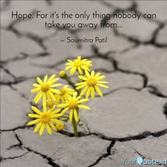 Inspirational and motivational Quote on hope. A flower blooming in a desert. Image on hope