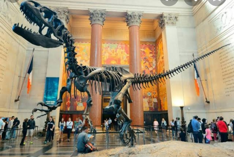 American museum of natural history entrance hall ante chamber with T.rex Tyrannosaurus skeleton